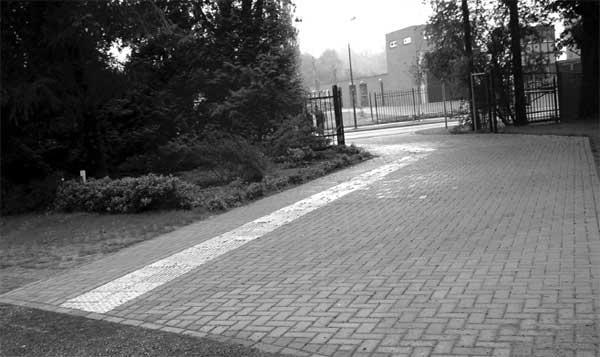 Белая рифленая плитка у входа на экотропу для незрячих людей