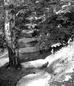 Пошаговая дорожка-лестница